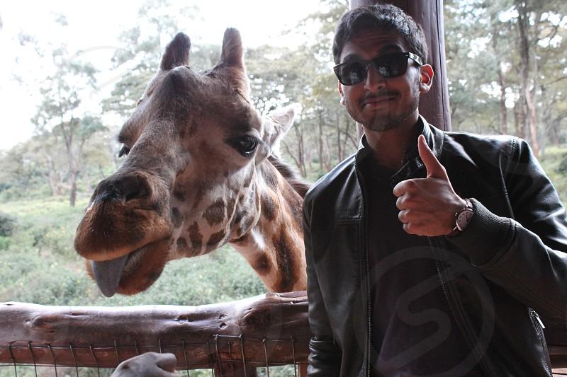 Giraffe Kenya Thumbs Up Tongue photo