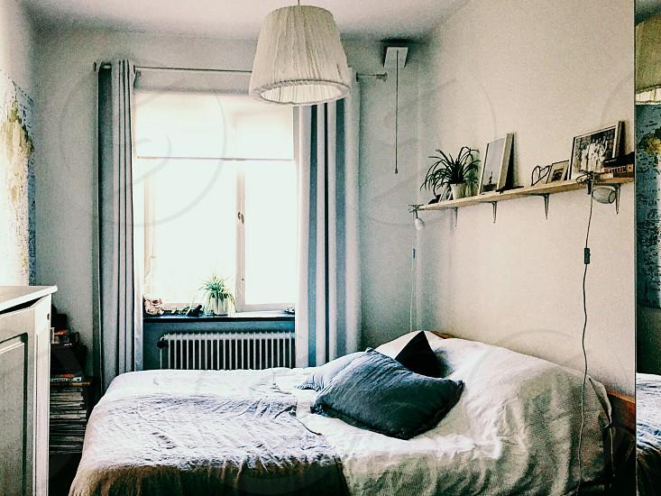 Bedroom bed  interior apartment  rent window photo