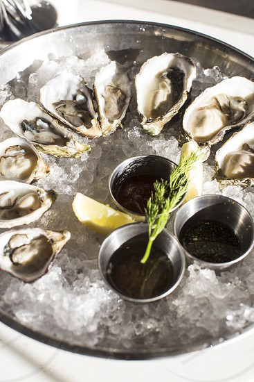oysters on crushed ice in stainless steel basin photo
