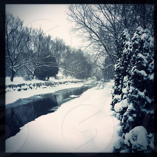 Winter scene monochrome photo