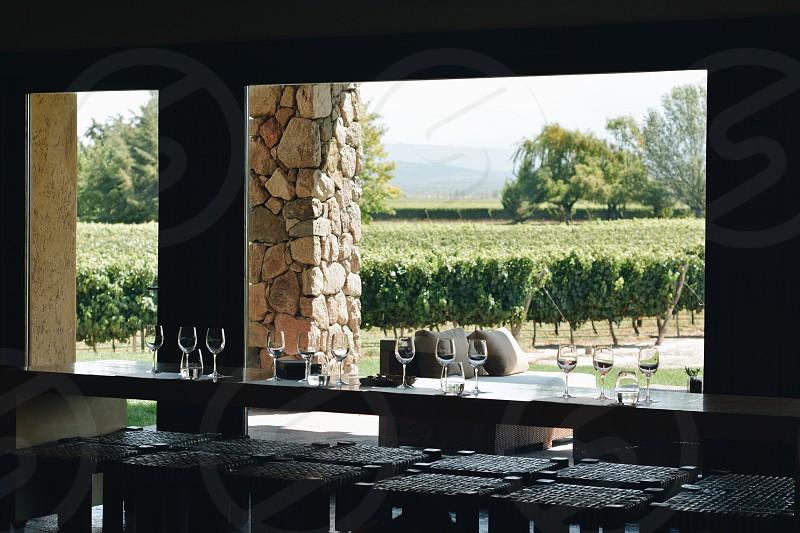 Vineyard winery photo