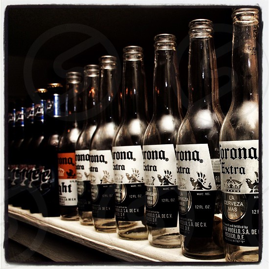 Corona Extra beer bottles photo