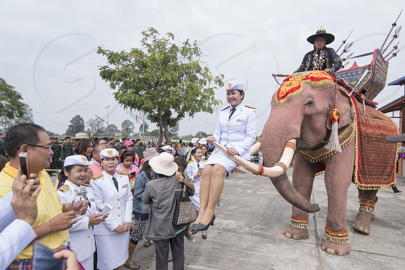 gouvernment people posing on a elephant at the tradititional Longboat Race at the Mun river of the town of Satuek north of the city Buri Ram in Isan in Northeast thailand.  Thailand Buriram November 2017 photo