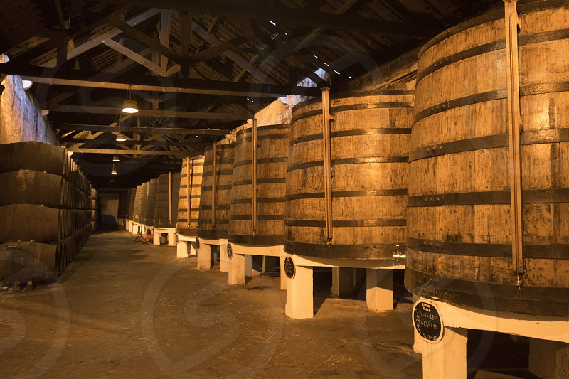 one of the Port wine Cellar of Ferreira at the waterfront  on the Douro River in Ribeira in the city centre of Porto in Porugal in Europe. photo