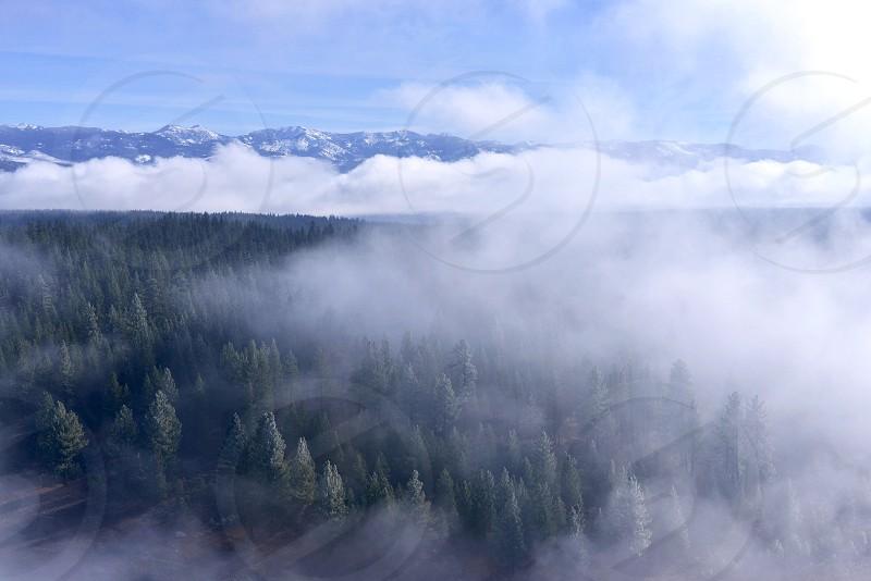 black mountain across green misty forest photo