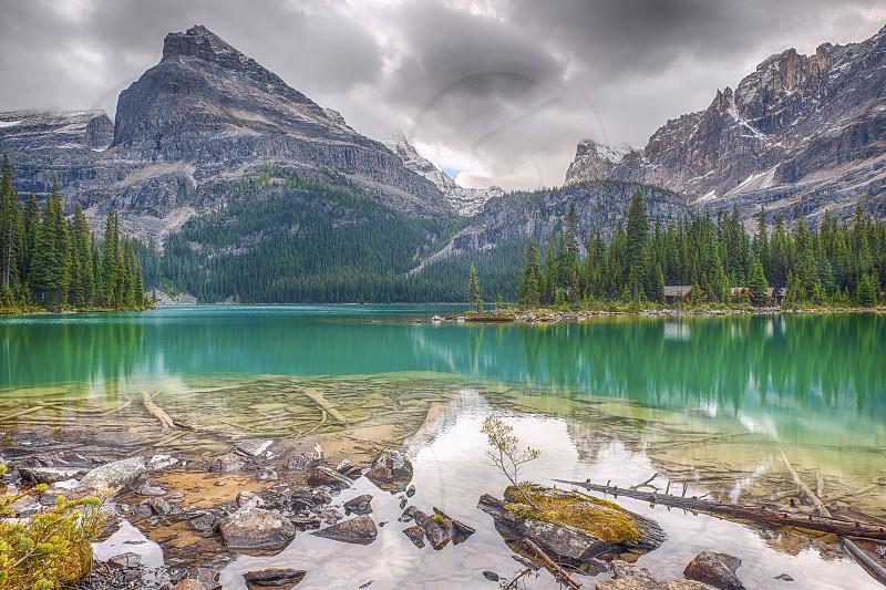 Emerald water of Lake O'Hara. Yoho National Park; British Columbia. Canada photo