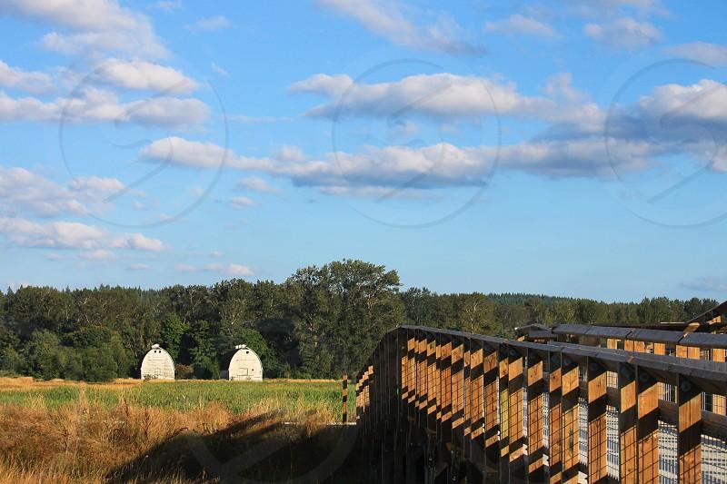 Twin Barns Nisqually Flats Washington photo