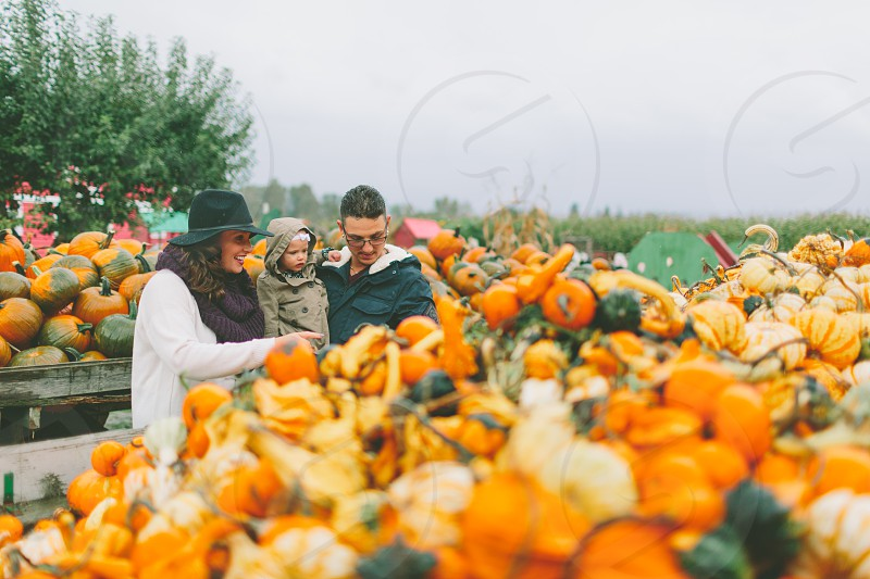 A family at the pumpkin patch. photo