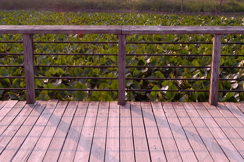 Deck. Boards. Weathered wood. Rail. Railing. Parallel lines. Pond. photo