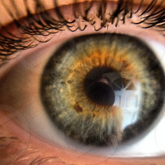 Eyes with stories photo