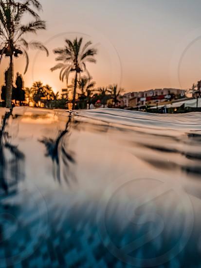 Water swimming pool Egypt park sunset  photo