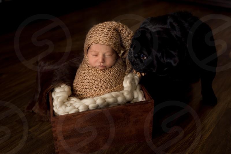 newborn baby boy photo