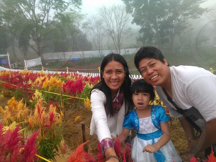 sirao flower farm photo