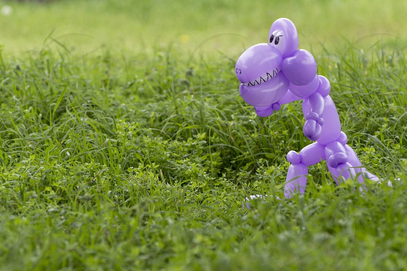 Purple balloon animal dinosaur with teeth and eyes looking scary in the lush green grass of a back yard photo