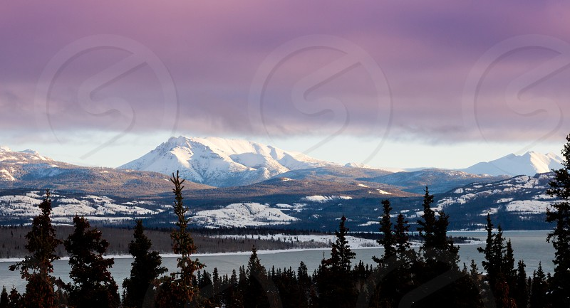 Pink winter sunset clouds over landscape in early winter of Lake Laberge Yukon Territory Canada photo