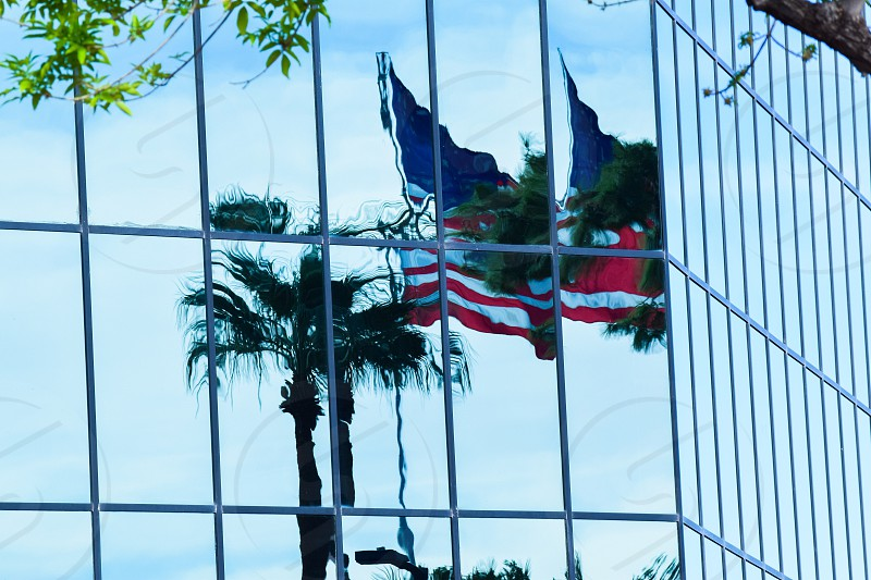 Architecture building Windows reflection reflecting flag Palm tree photo