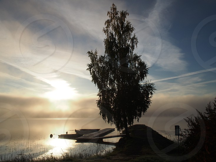 Sunrise over lake Ljustern and some boats and a pier and a big birch.  photo
