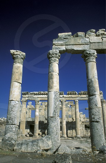 the ruins of Apamea near the city of Hama in Syria in the middle east photo