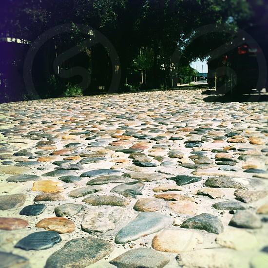 cobblestone journey photo