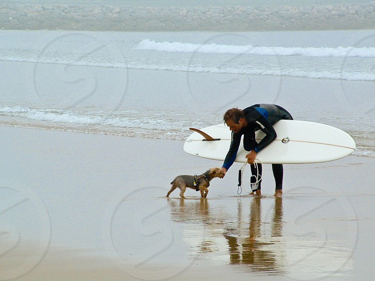 man holding white surfboard with brown and black australian terrier photo