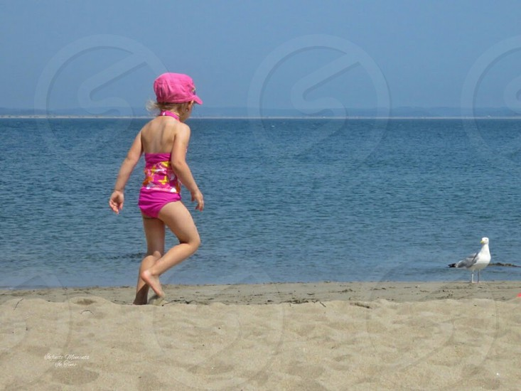 freedom summer fun adventure ocean beach sand seagull bird little girl child pink hat swimsuit play run blue sky nature photo
