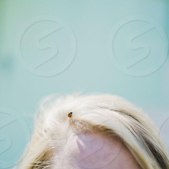 human blonde hair photo