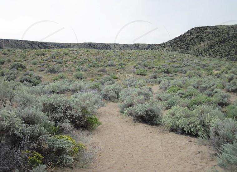 Petroglyph National Monument NM photo