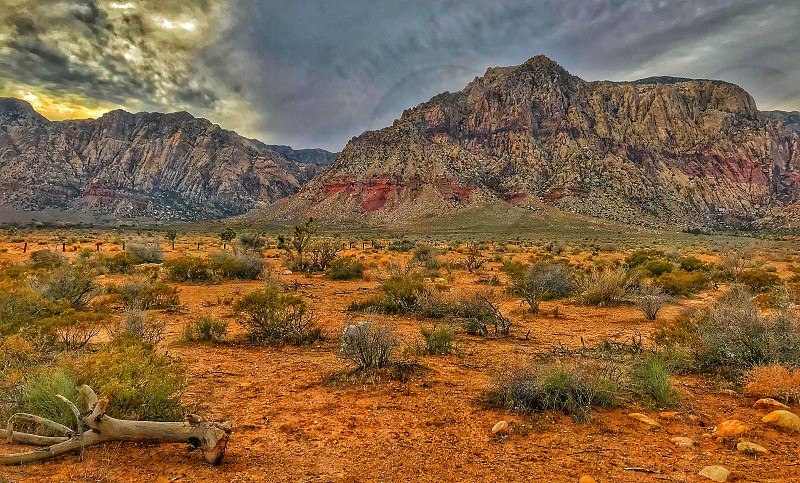 Red Rock National Conservation Area. Las Vegas NV. photo