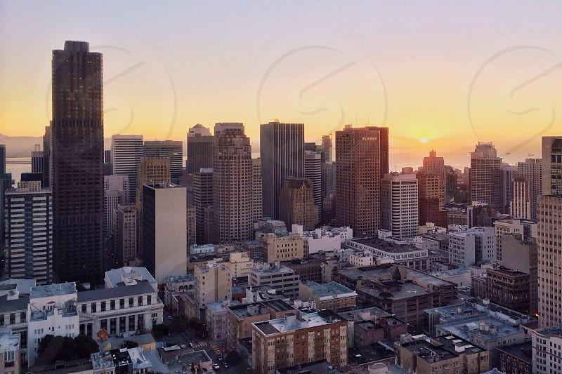 black skyscraper  photo