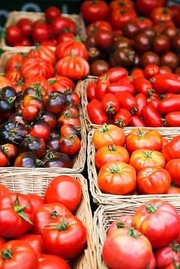 Tomato tomatoes salad collection  red yellow market farmers market  business  health food vegetables vegetable eat red yellow collection different selling photo