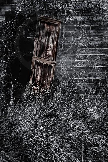 Old  building doorway photo