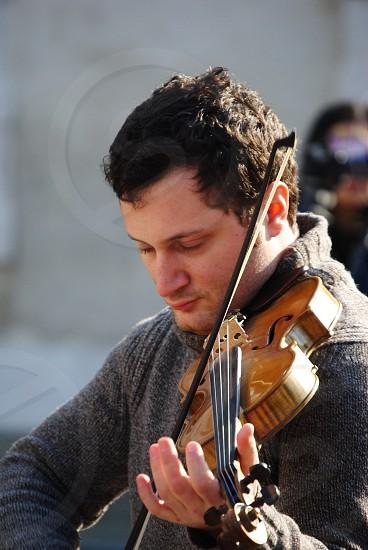 brown violin  photo