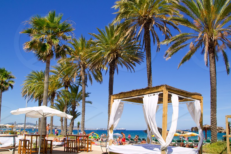 Ibiza Platja En bossa beach with palm trees a party landmark photo