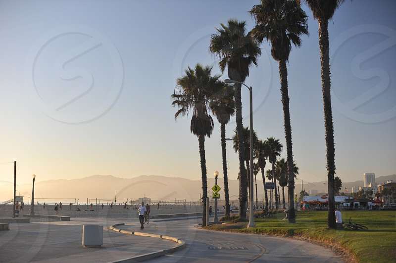 Beach in Santa Monica California  photo