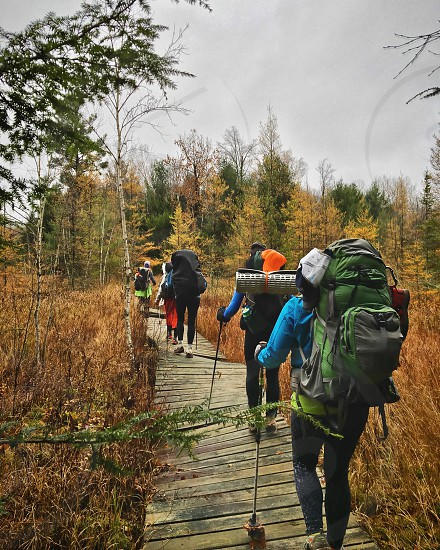 Women backpacking across a crooked boardwalk in the wilderness photo