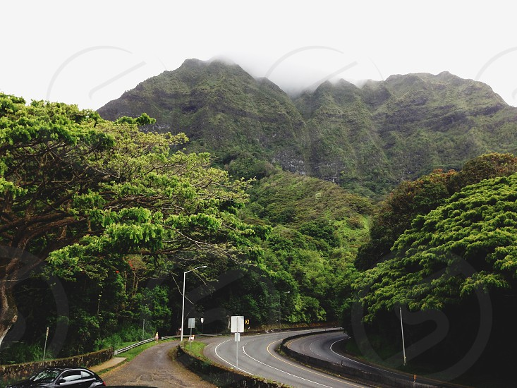Highway 3 Pali Lookout Oahu Hawaii Travel Mountains Landscape photo