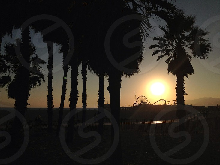 Sunset in Santa Monica CA. photo
