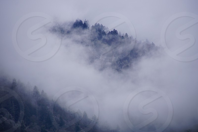 Smokey Mountains National Park photo