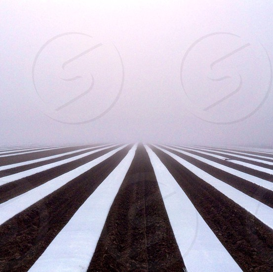 Fog and Farmland Hadley Massachusetts photo
