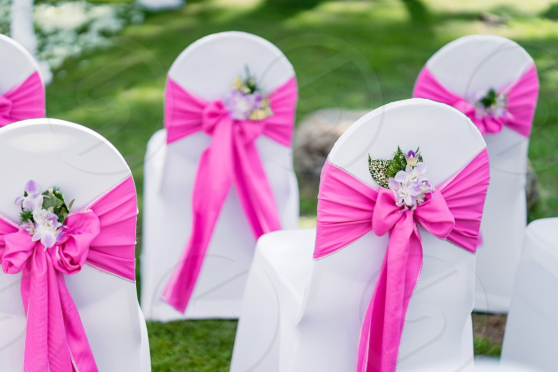 Wedding chairs spandex white cover chairs pink organza sash with cone of flower petals decoration setup for outdoor wedding on the green grass photo