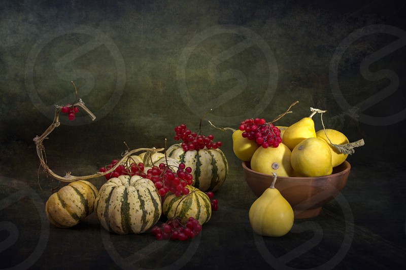 Pumpkins and berries of ripe red viburnum on a dark background photo