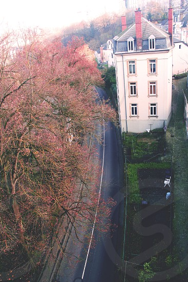 Luxemburg  photo