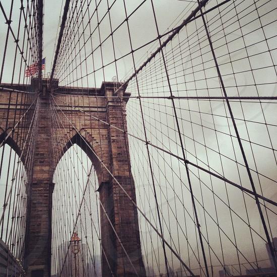Brooklyn B photo
