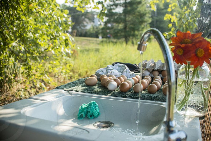 silver faucet dripping water into an outdoor sink with farm fresh eggs and orange gerbera daisies on the counter photo