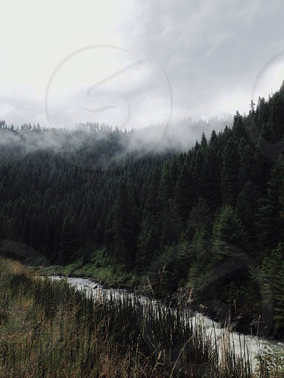 Idaho Mountains Fog River Trees View Scenery Nature Overlook photo