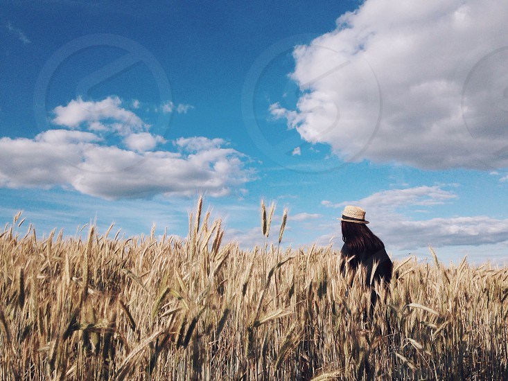 woman in black wearing a hat standing in a wheat field under a white cloud blue sky photo