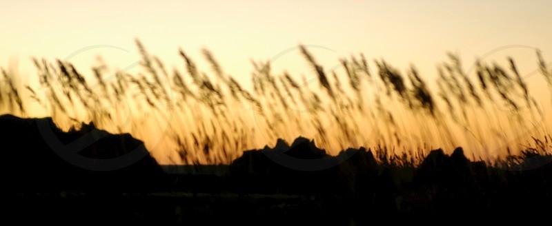 Sunset. Silhouette. Badlands. photo