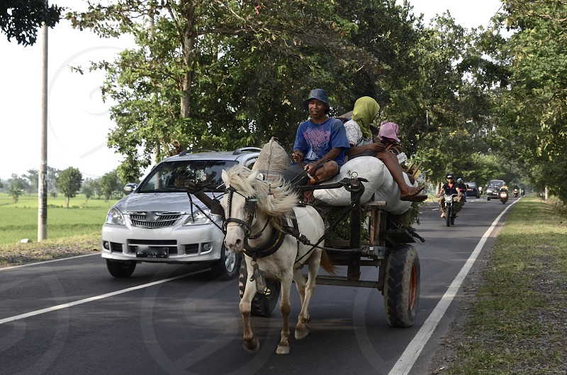 Traditional meets modern. Farmers in Lombok Indonesia photo