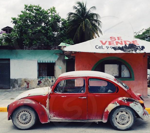 red volkswagen beetle photo