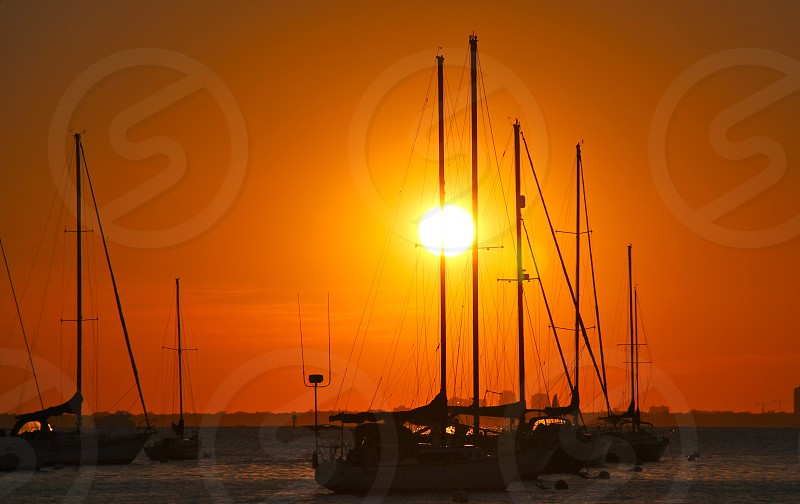 boats dock on harbor during sunset photo